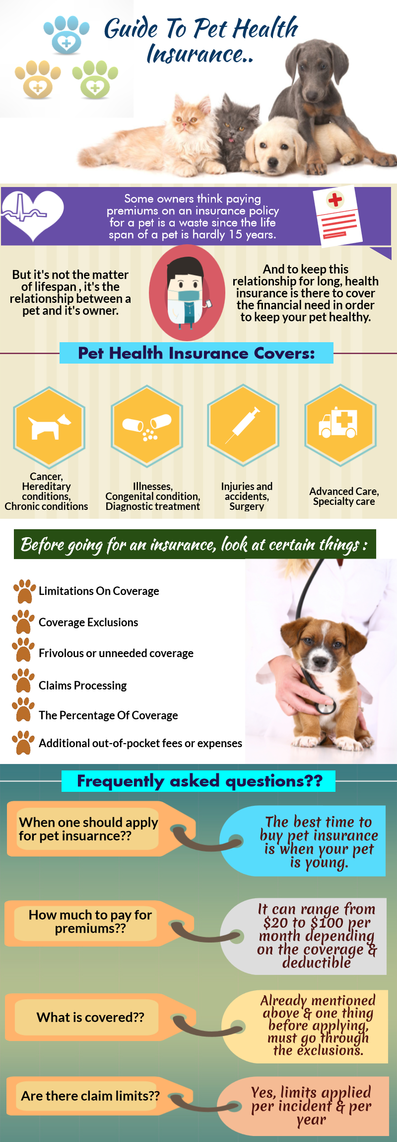 Guide To Pet Health Insurance